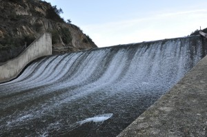 LP Dam Fish Passage
